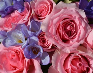 Bouqouet of blue Freesia and pink roses
