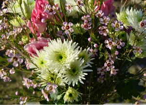 White Chrysanthemum combined with pink Liasanthus and pink waxflower