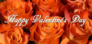 Happy Valentine orange roses